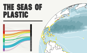 The Seas of Plastic Interactive